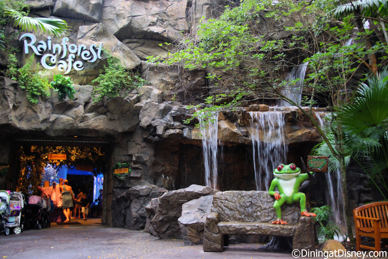 Rainforest Cafe At Disney S Animal Kingdom