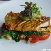Florida Grouper at Fulton's Crab House in Downtown Disney Marketplace