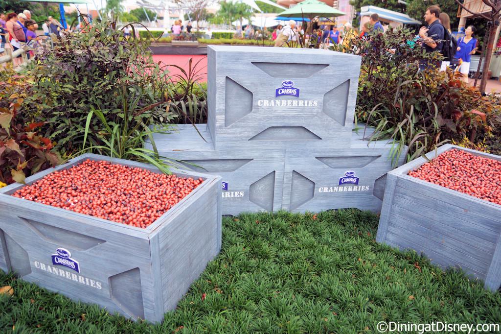 Ocean Spray cranberry bog - 2013 Epcot Food and Wine Festival