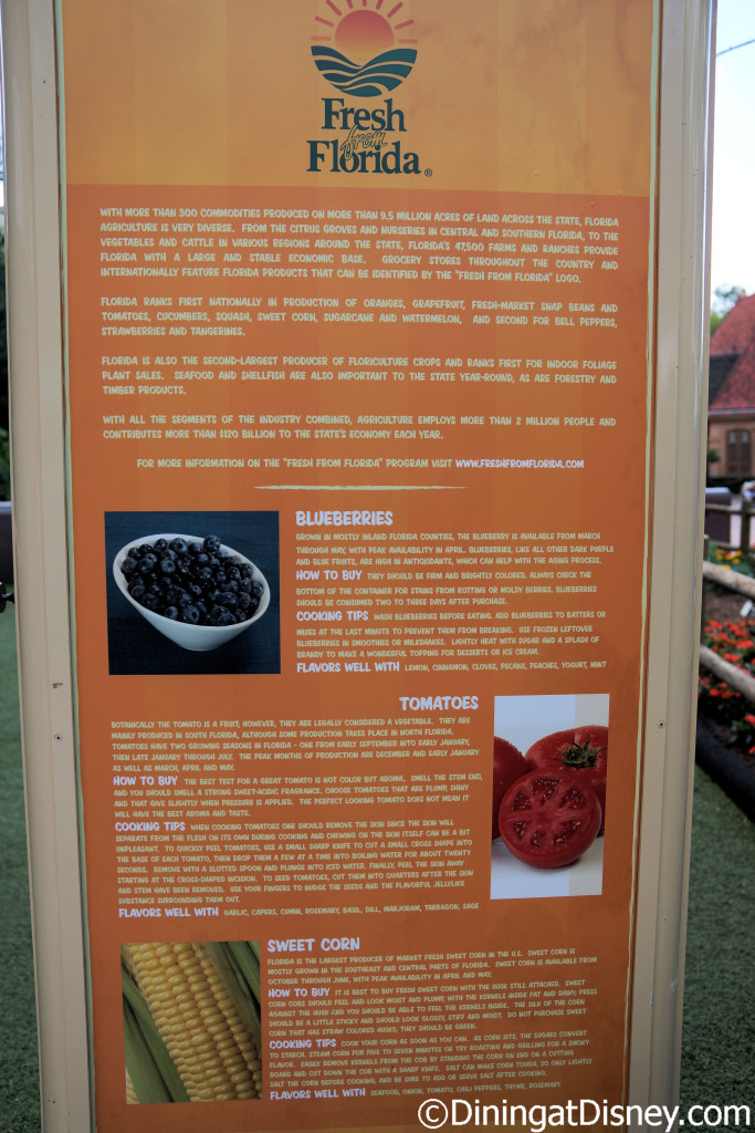 Fresh From Florida produce information from Florida Fresh at the 2015 Epcot  Flower and Garden Festival