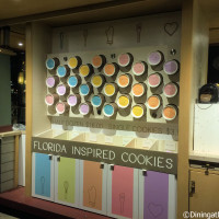 Florida Inspired Cookies in Disney Springs