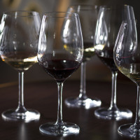 """From Stem to Stem"" wine tasting experience on Disney Cruise Line"