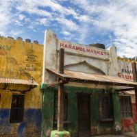 Harambe Market in Africa at Disney's Animal Kingdom