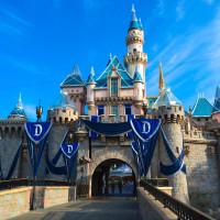 Sleeping Beauty Castle Diamond
