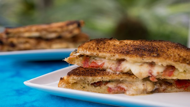 Fontina and tomato basil grilled cheese sandwich at Taste Track in Epcot