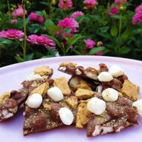 S'mores Bark [photo by: Disney]