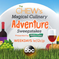Enter to win a trip to Epcot International Food & Wine Festival from The CHEW