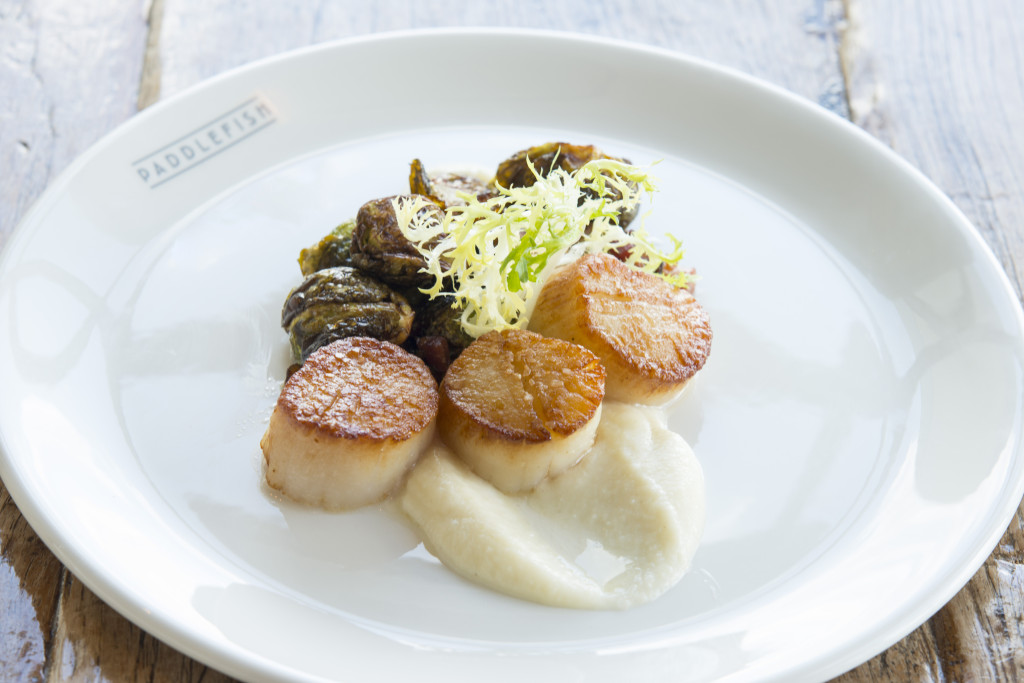 Scallops, Brussel Sprouts and Cauliflower Puree from Paddlefish in Disney Springs