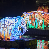 Rivers of Light at Disney's Animal Kingdom will debut on Feb. 17, 2017